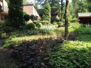 wilde tuinontwerp