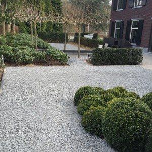 moderne vorm tuin