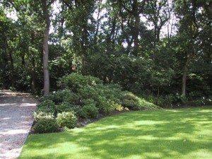 onderhoud in tuin