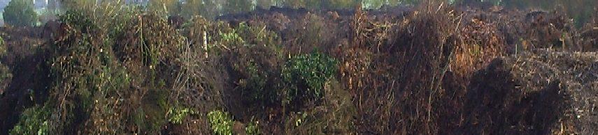 Hoe verwerken wij uw tuinafval